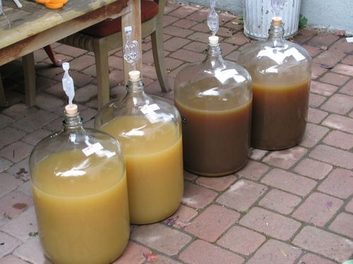 Sauvignon Carboys